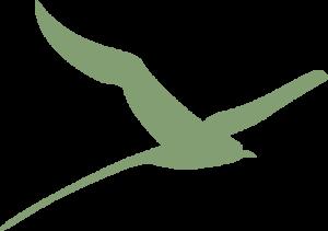 BirdCallout